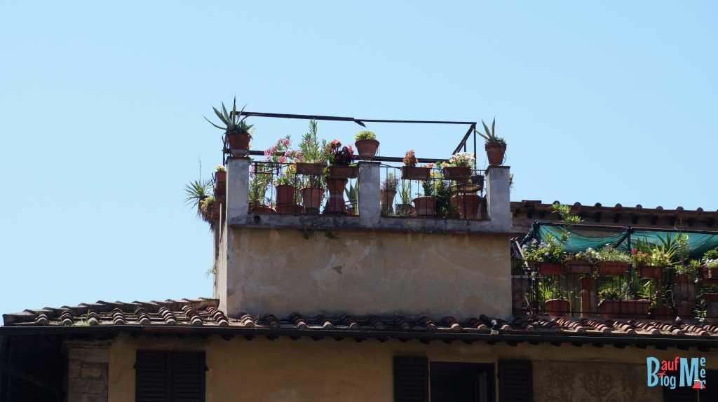 Dachterässchen in Florenz
