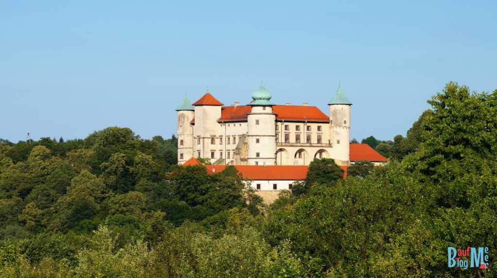 Schloss in der Nähe von Bochnia
