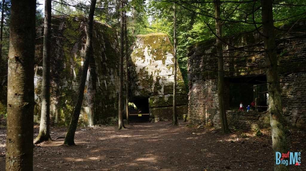 Bunkerreste im Führerhauptquartier Wolfsschanze