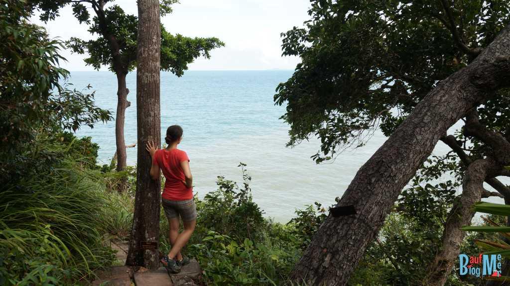 Ausblick vom Anfangsteil des Nature-Trails