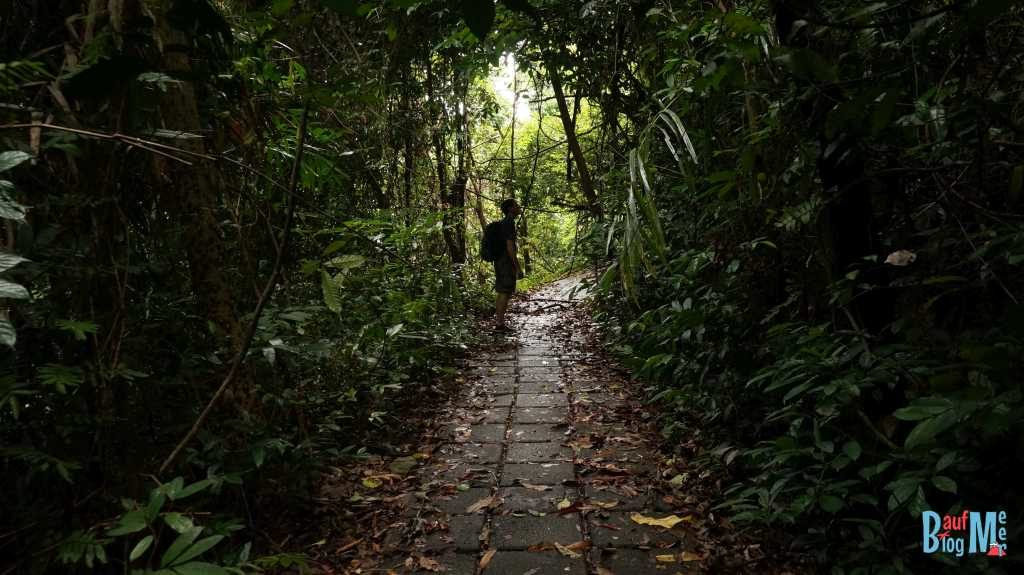 Auf dem Nature-Trail