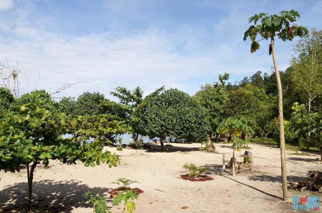 Strandgarten des Jophira TinTin