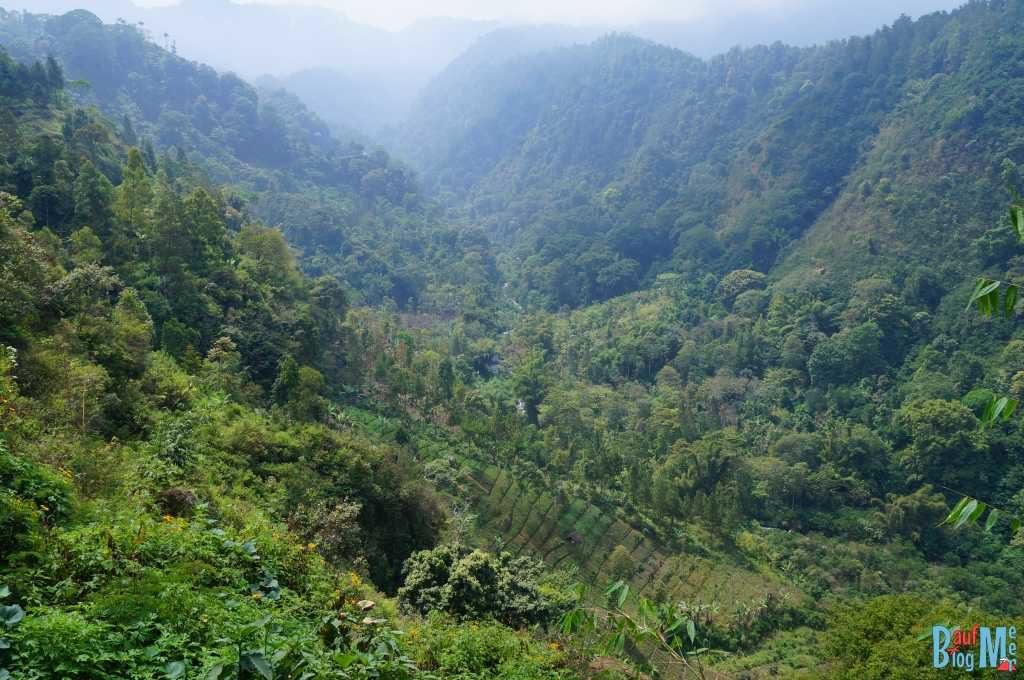 Bromo auf eigene Faust entdecken: Ausblicke bei der Fahrt von Malang zum Bromo