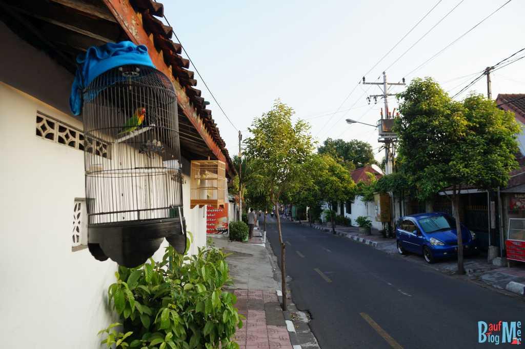 Überalle sieht man sie: Vogelkäfige in Yogyakarta