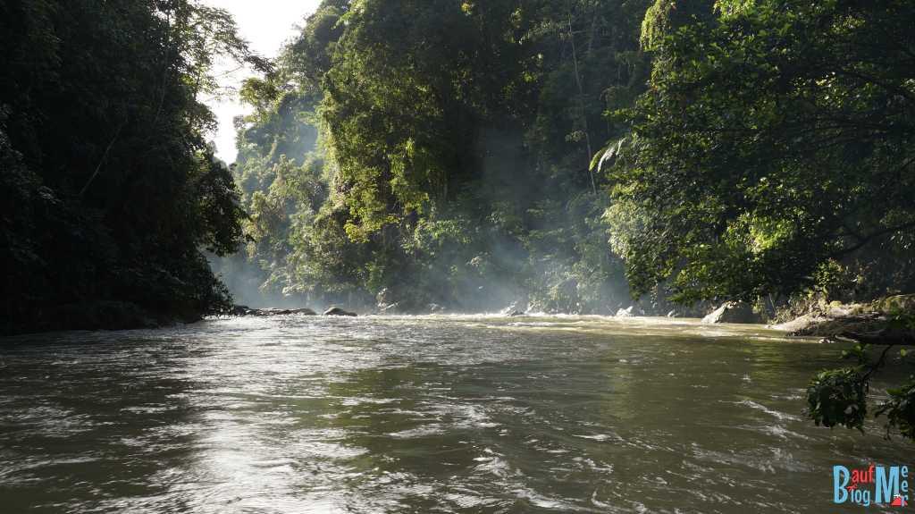 Wunderschöner Morgen am Bohorok Fluss nahe Bukit Lawang