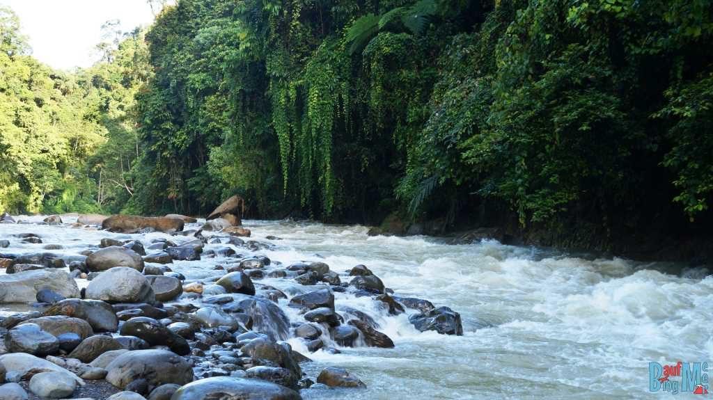 Bohorok Fluss kurz vor Bukit-Lawang
