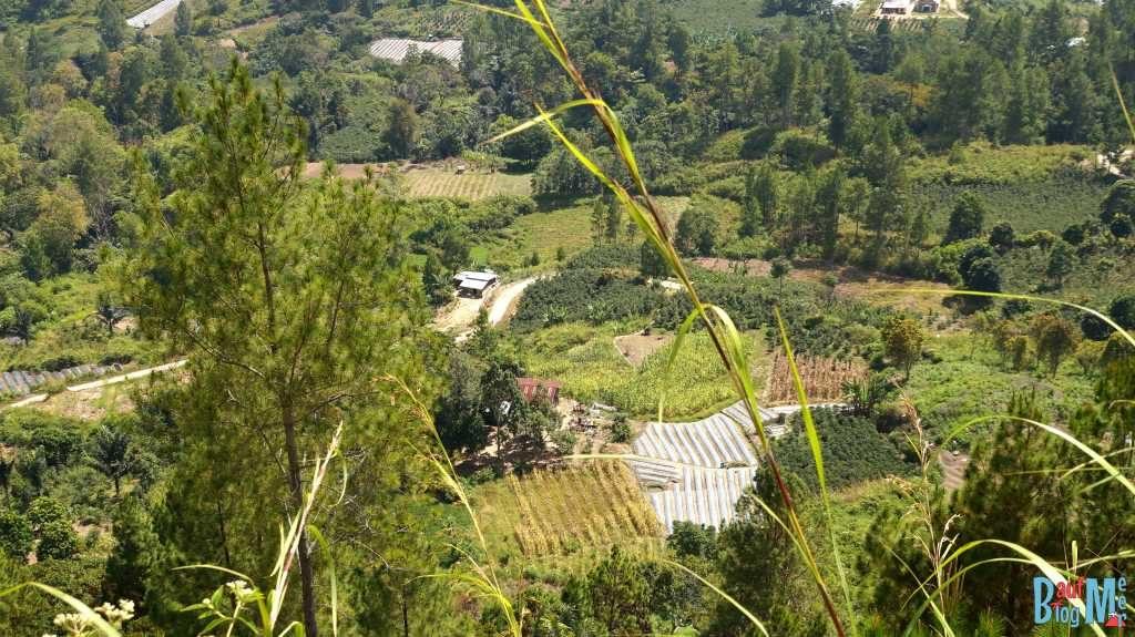Aussicht vom Viewpoint auf Samosir
