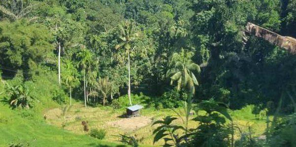 Ausblicke bei der Busfahrt nach Bukittinggi