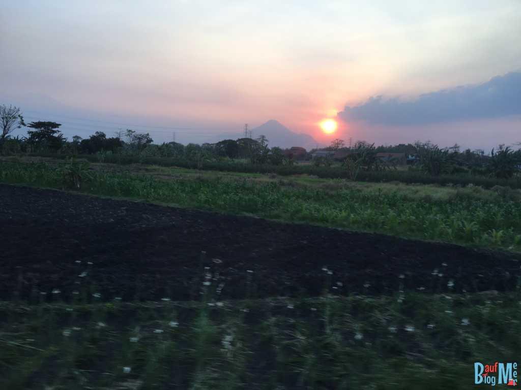 Zugfahrt nach Banyuwangi, auf dem Weg zum Ijen Krater