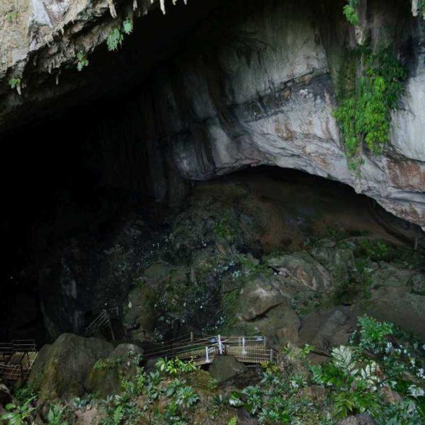 Abstieg zur Wind Cave im Gunung Mulu Nationalpark