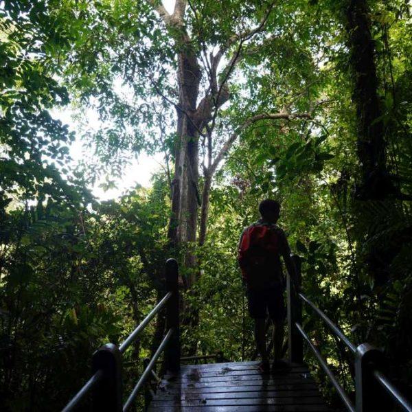 Ausgang aus der Wind Cave im Gunung Mulu Nationalpark