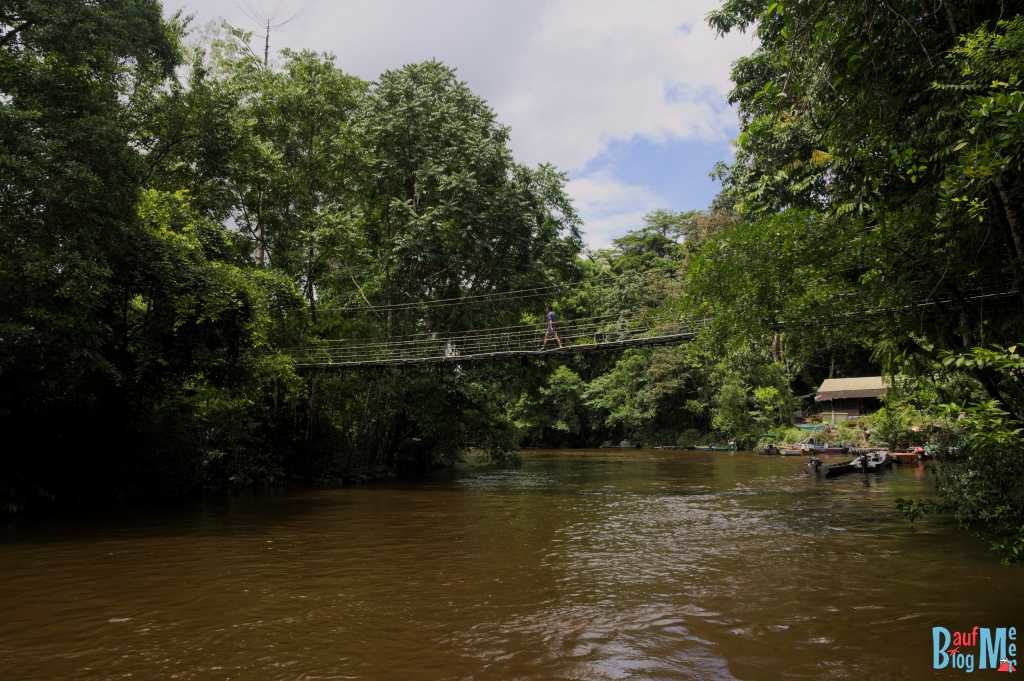 Brücke zum Gunung Mulu Nationalpark