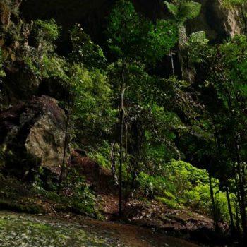 Eingangsbereich der Deer Cave im Gunung Mulu Nationalpark