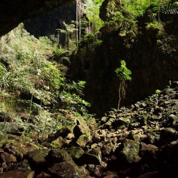 Eingang zur Deer Cave im Gunung Mulu Nationalpark