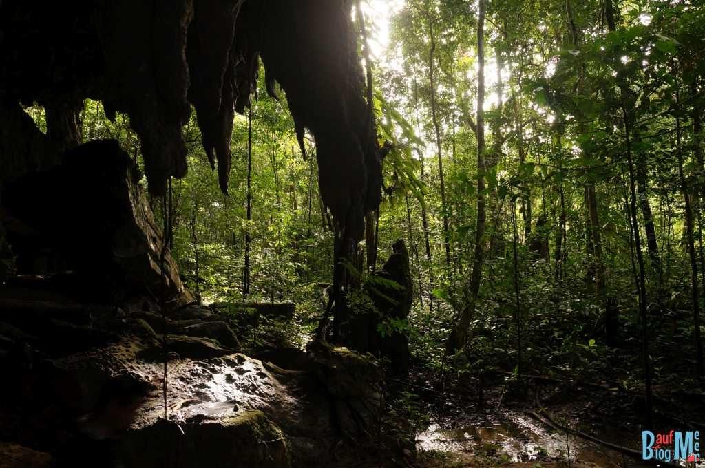 Eingangsbereich der Racer Cave im Gunung Mulu Nationalpark