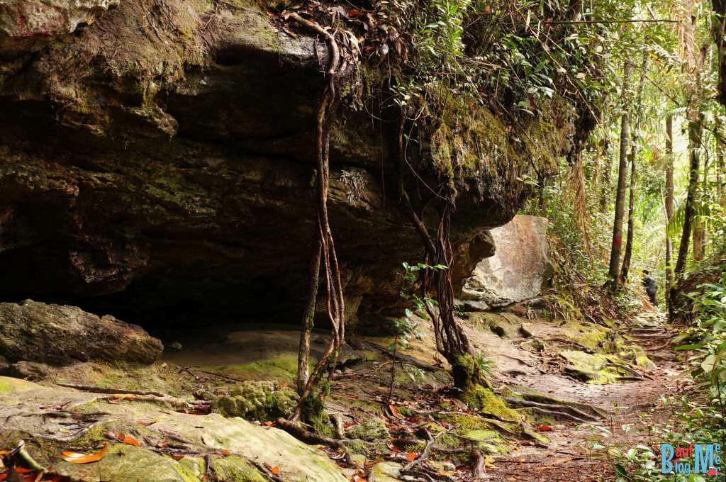Weg vorbei an Felsen im Bako Nationalpark