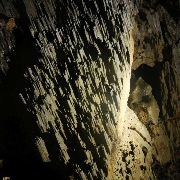 Bakterielle Formationen in der Clear Water Cave