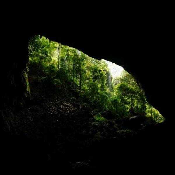 """Blick auf den """"Garden of Eden"""" von der Deer Cave im Gunung Mulu Nationalpark"""