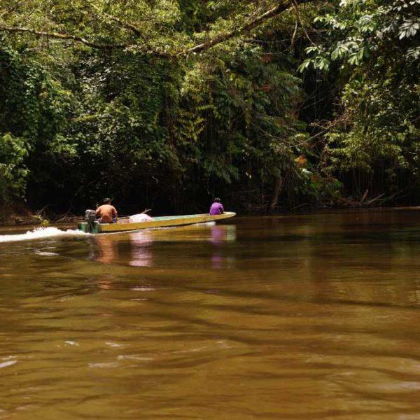 Langboot im Gunung Mulu Nationalpark