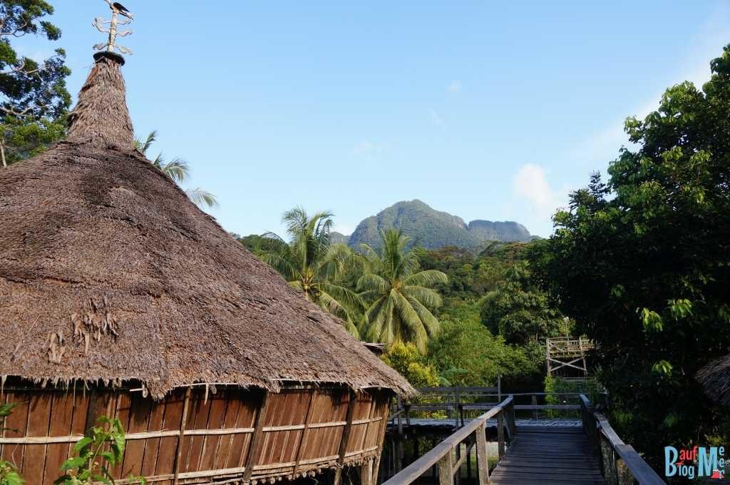 Bidayun Haus im Sarawak Village
