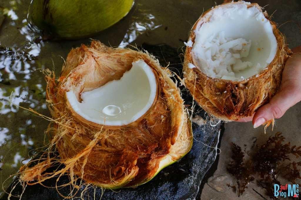 Selbst aufgebrochene junge Kokosnuss