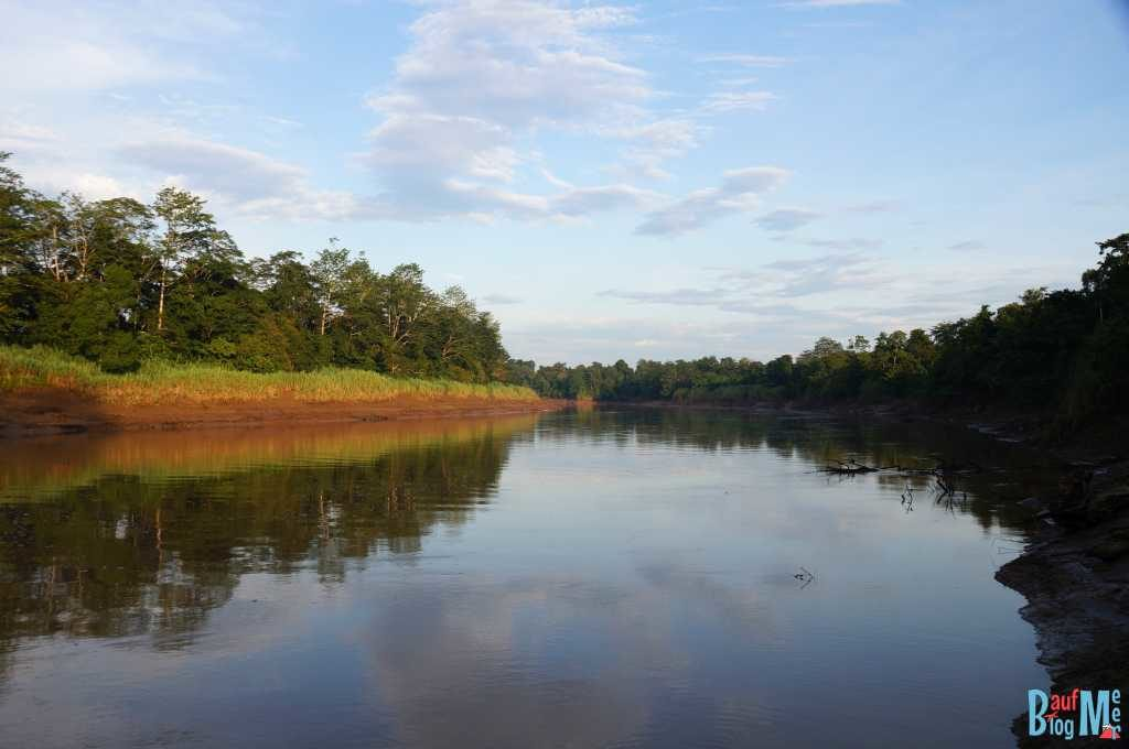 Kinabatangan River am Morgen