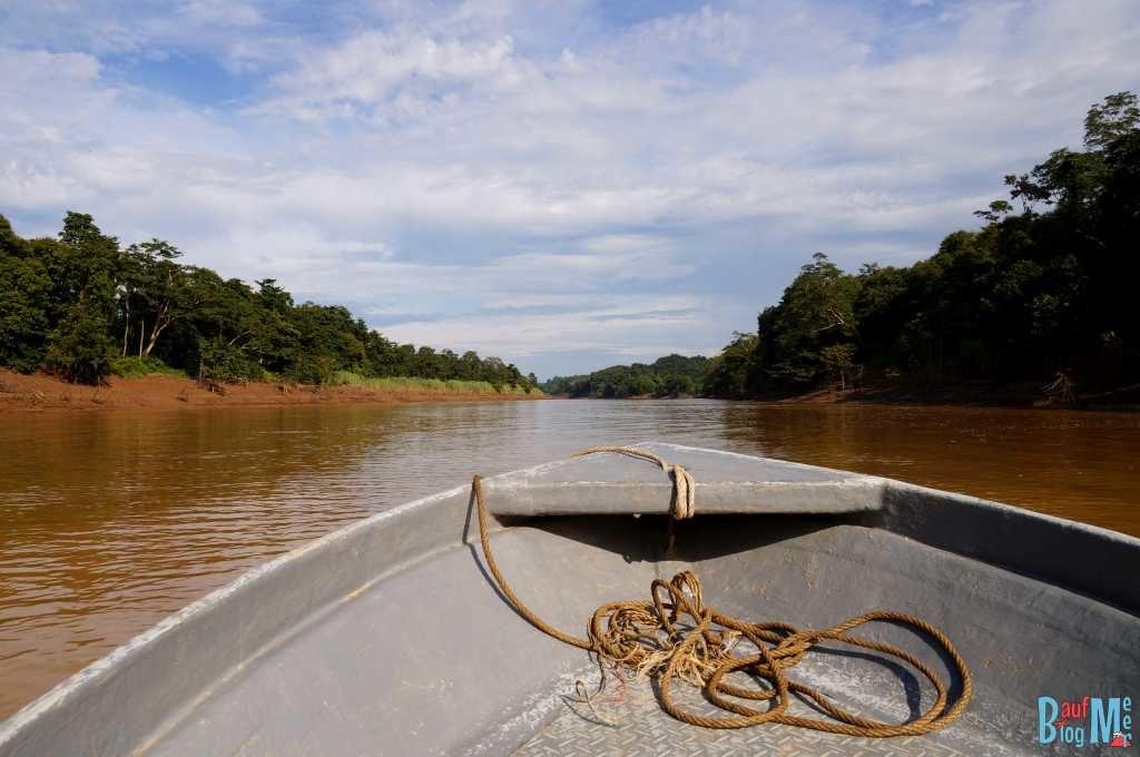 Kinabatangan River vom Boot aus am Morgen