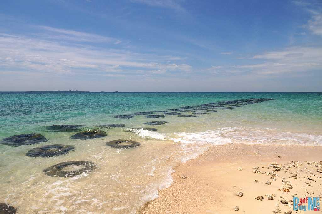 Reef Balls bei der Turtle Island Selingan. Diese sollen dazu dienen, dass sich ein neues Riff entwickelt.