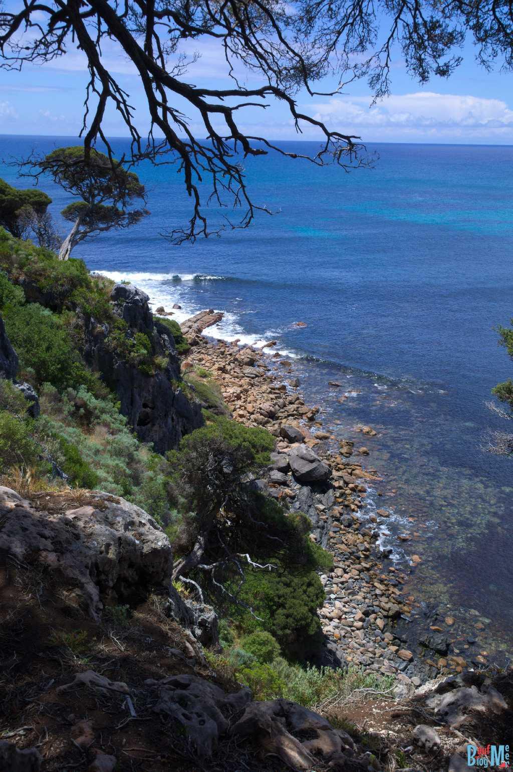 Ausblick auf die Küstenlandschaft vom Aussichtspunkt beim Shelly Cove