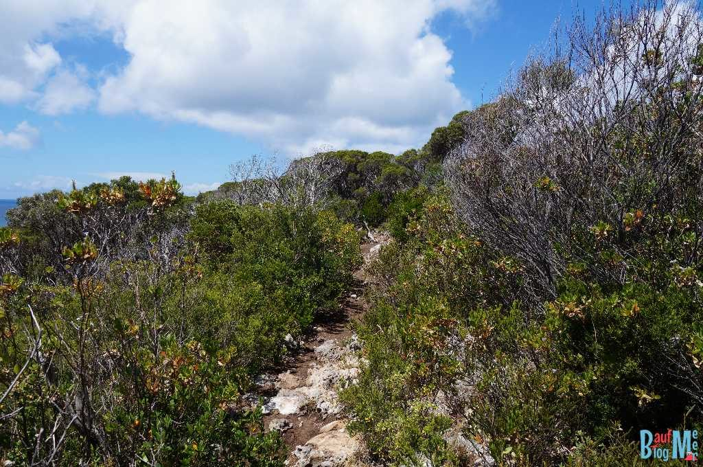 Wanderweg am Cape Naturaliste