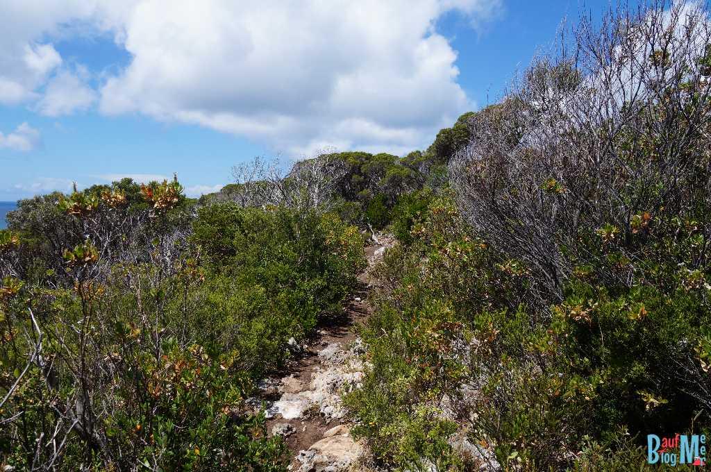 Wanderweg am Cape Naturaliste