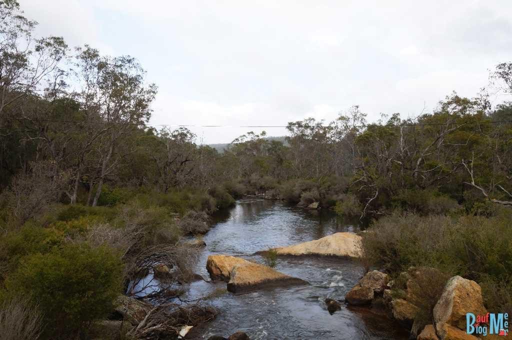 Collie River beim Wellington Damm