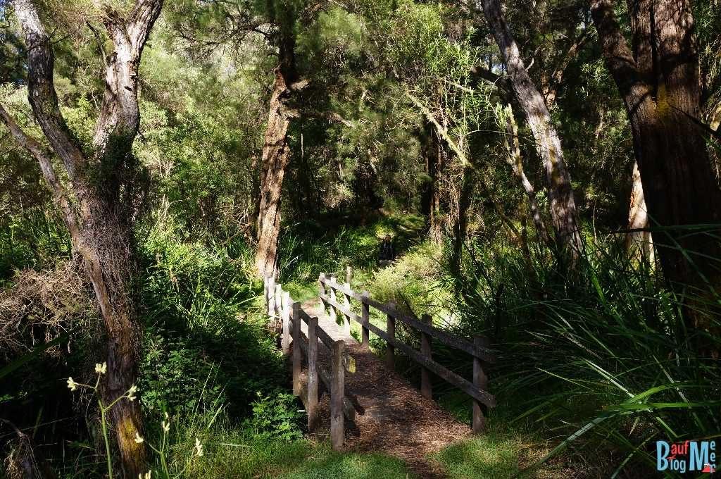 Holzbrücke im Warren Nationalpark
