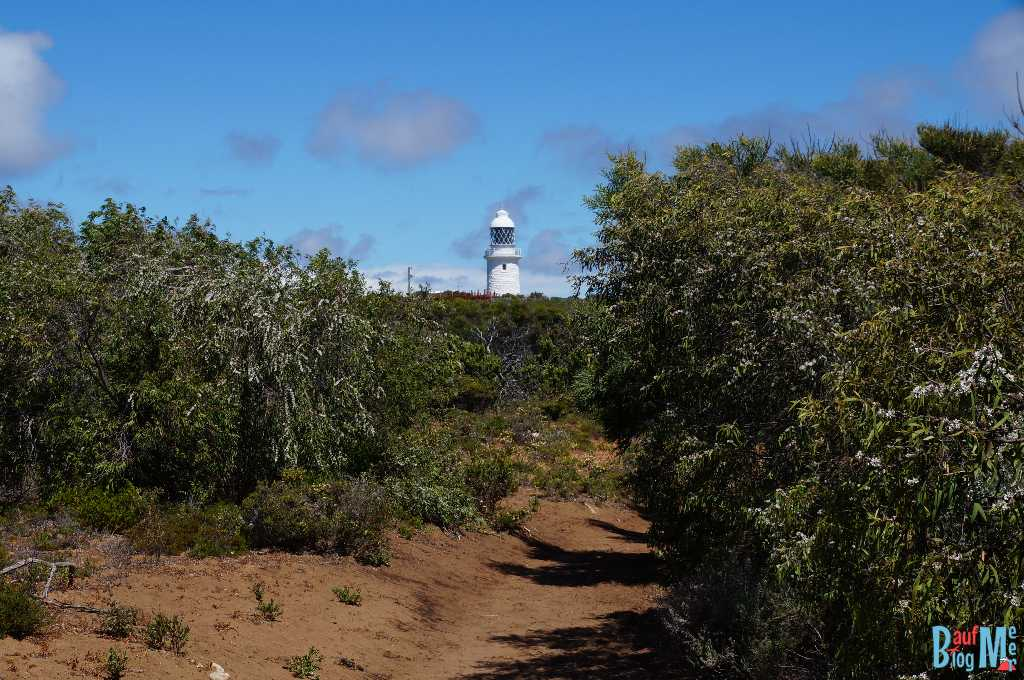 Leuchtturm des Cape Naturaliste