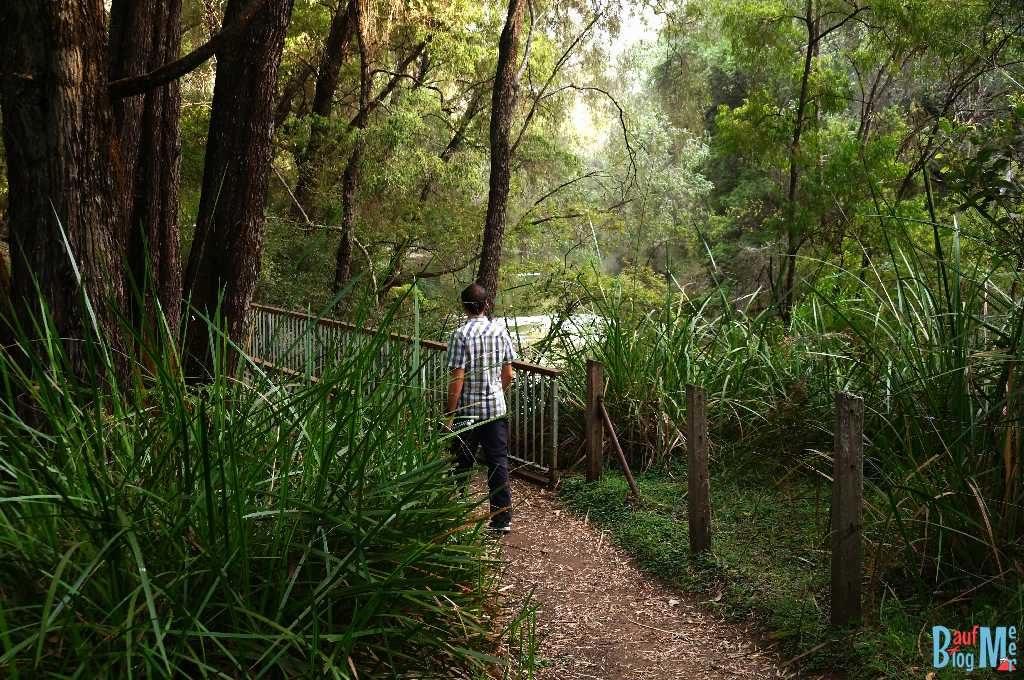 Wanderwege im Wellington Nationalpark
