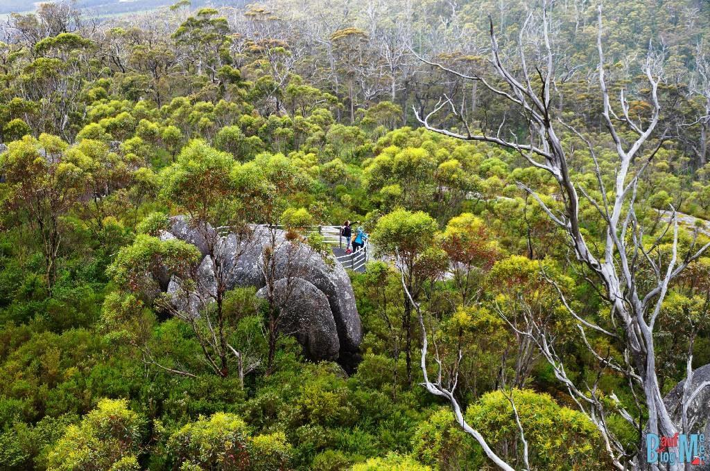 Wandern im Porongurup Nationalpark und dann Ausblick vom Granite Skywalk auf die untere Aussichtsterasse (links abbiegen) genießen.