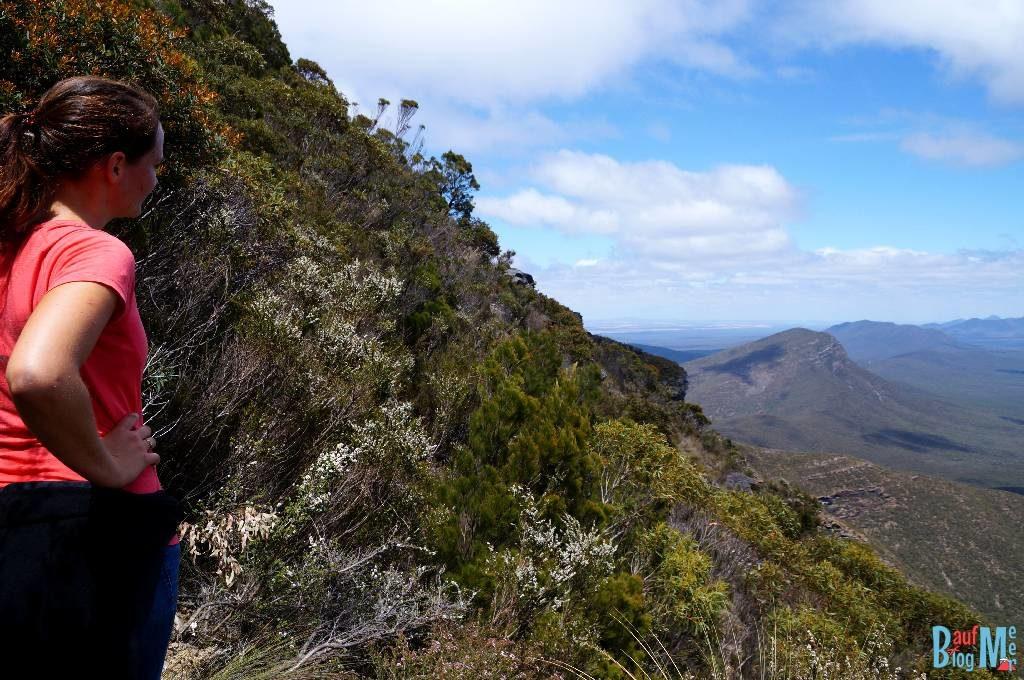 Aussicht beim Aufstieg auf den Bluff Knoll