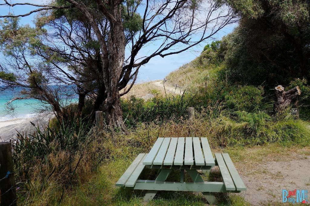 Picknickbank beim gratis Camping Platz Cosy Corner. Direkt am Strand