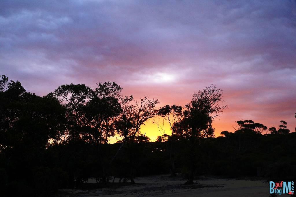 Sonnenuntergang auf einem Busch Parkplatz, auf dem wir übernachteten.