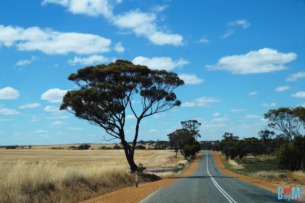 Straßen in Western Australia in der Nähe der Stirling Range