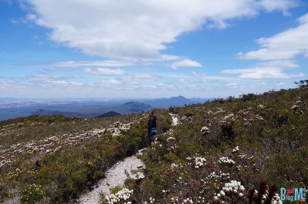 Anna auf dem Wanderweg nahe des Bluff Knoll Gipfels