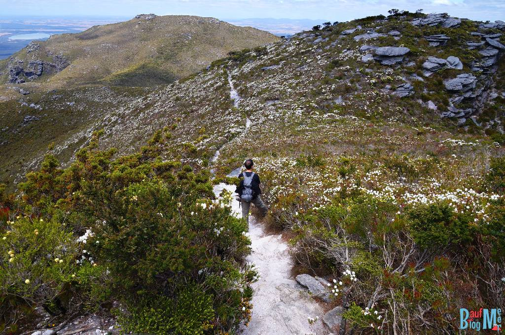 Chris auf dem Wanderweg zurück vom Gipfel des Bluff Knoll