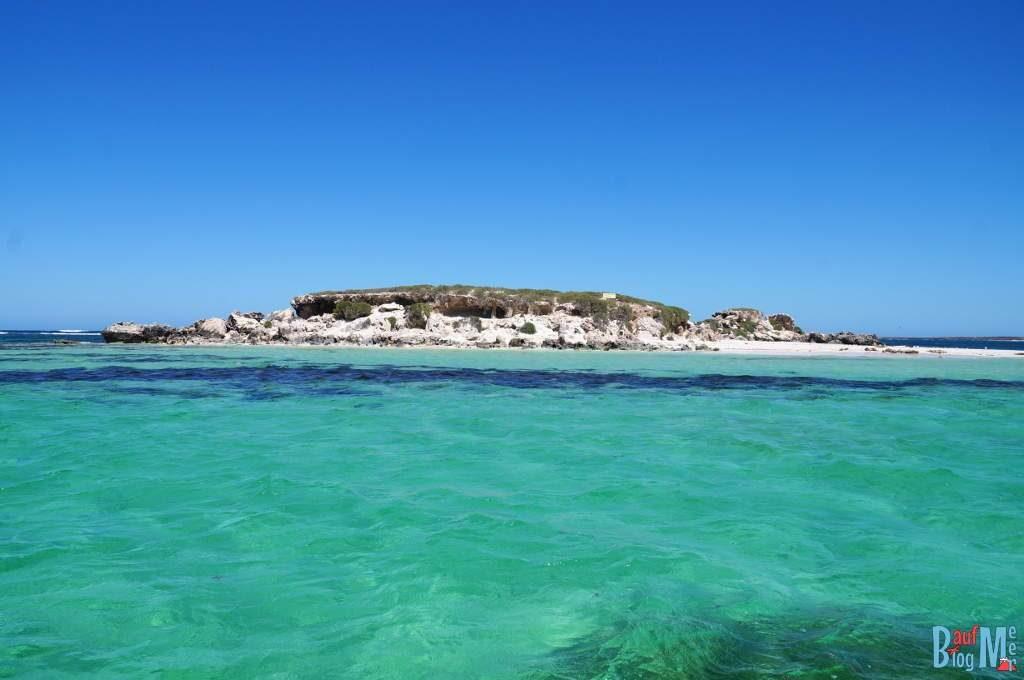 Insel auf der Seelöwen leben bei Jurien Bay, Western Australia