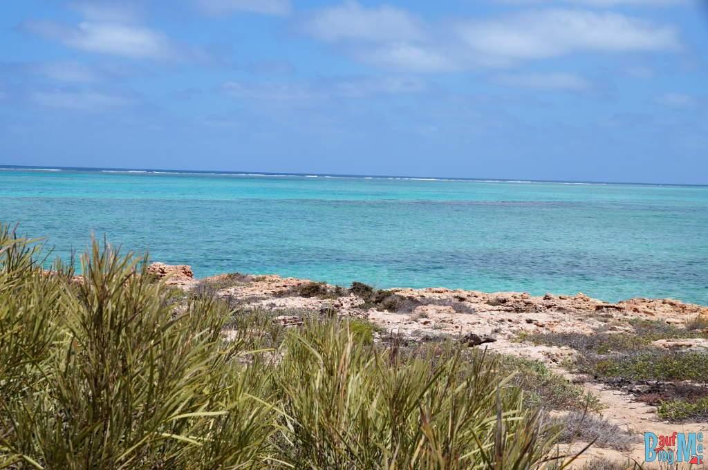 Türkisenes Meer zwischen Osprey und Sandy Bay