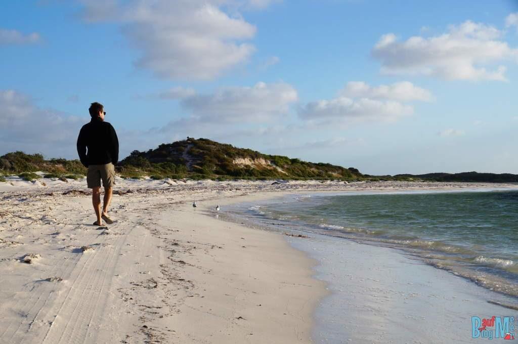 Strandspaziergang am Strand von Milligan Island bei Abenddämmerung
