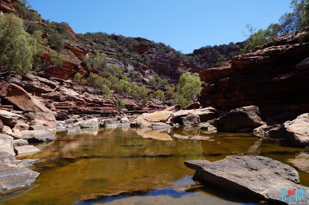Gelber Murchison River im Kalbarri Nationalpark