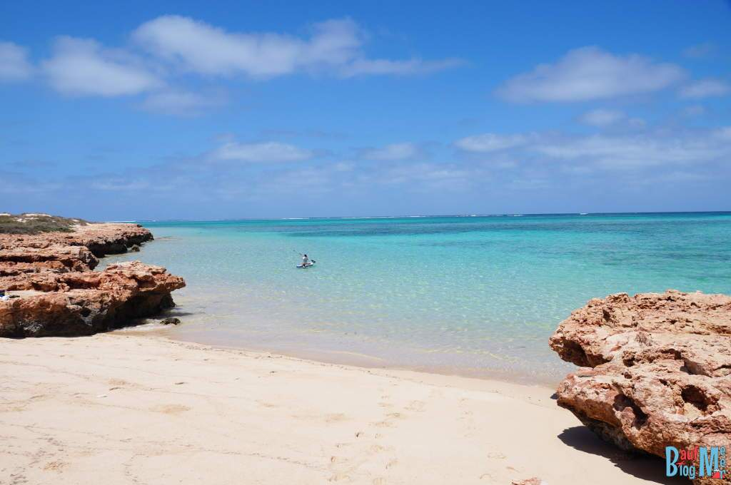 Strand an der Osprey Bay