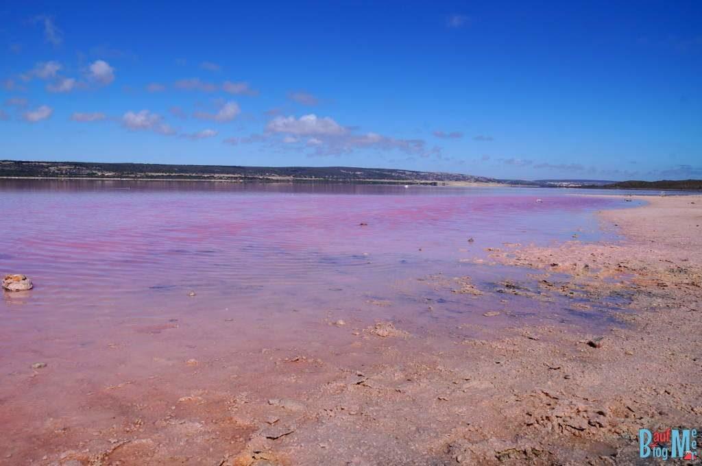 Pinker See, Hutt Lagoon