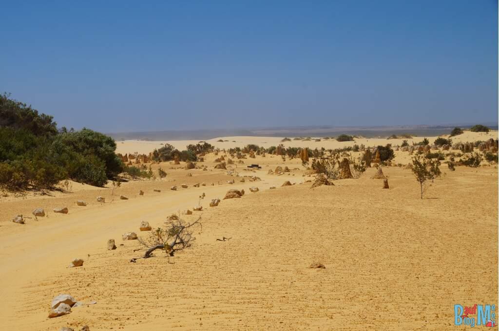 Befahrbarer Weg in der Pinnacle Desert im Nambung Nationalpark