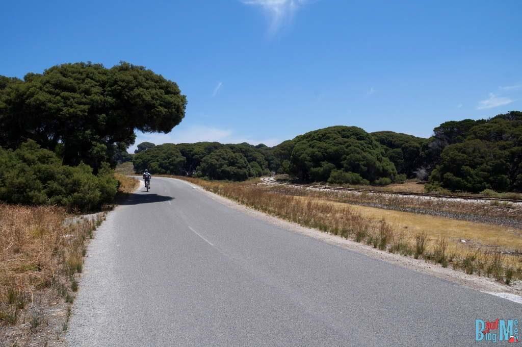 Radfahren auf den Straßen von Rottnest Island